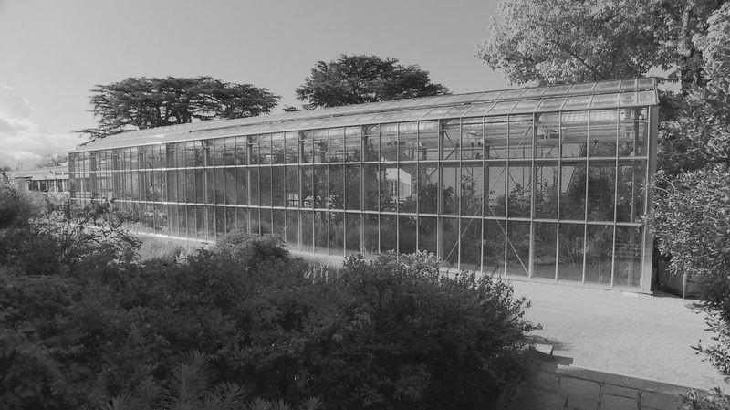 Serre du jardin botanique à Lausanne